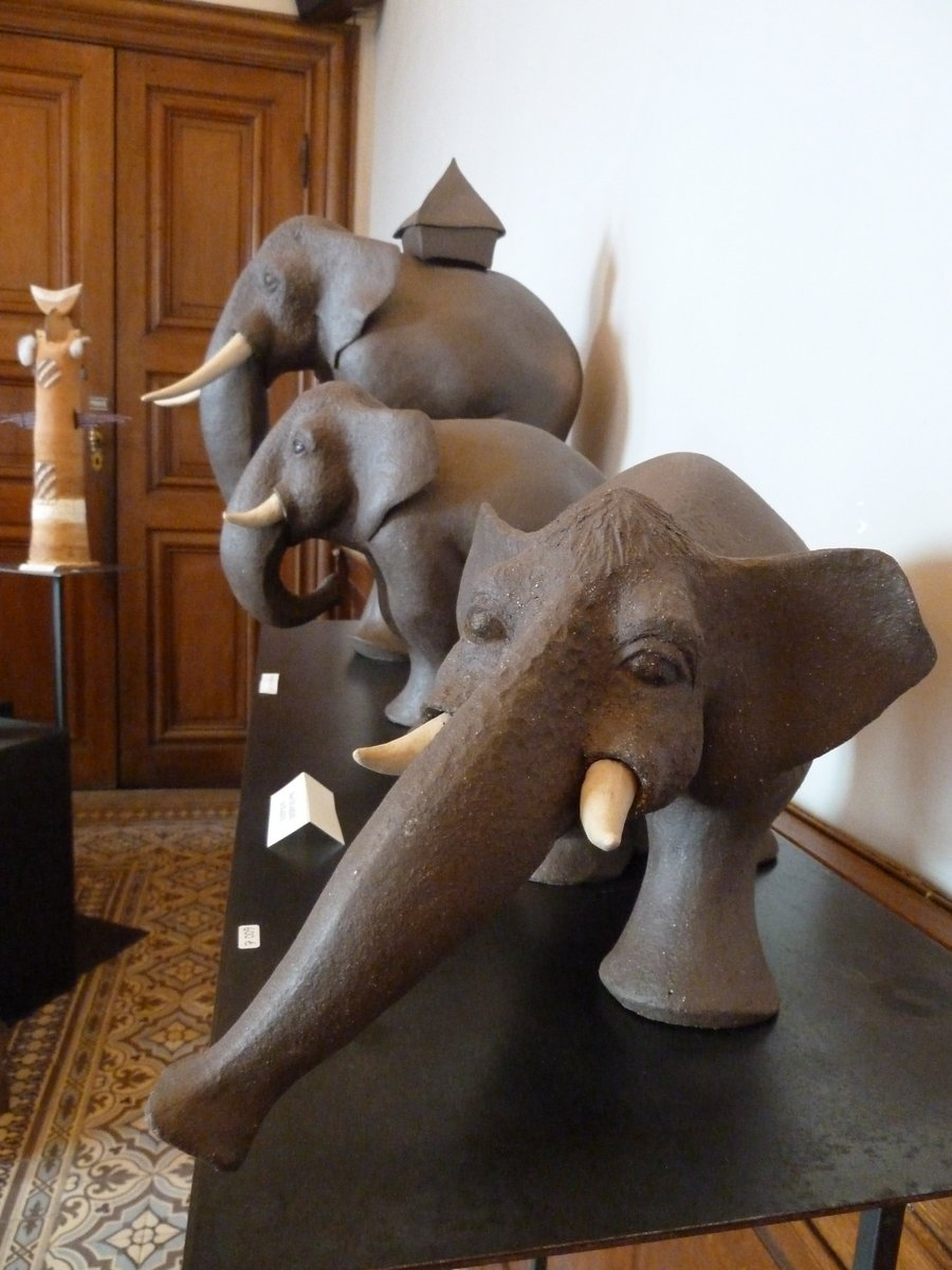 media/com_crc/members/1099/images/elephants 6.JPG